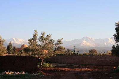 Marrakech in January