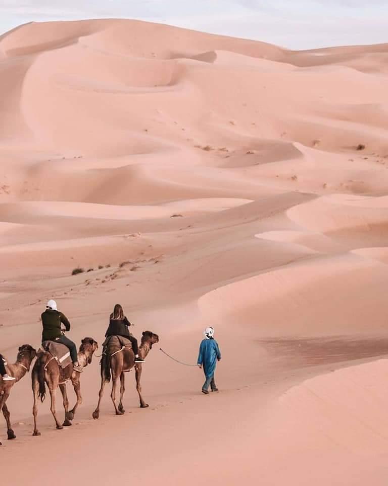 The Sahara at Merzouga