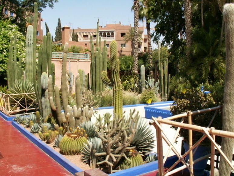 The Majorelle Gardens