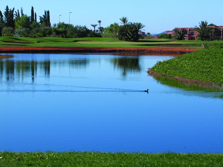 La Palmeraie: 17th green, beyond water hazard