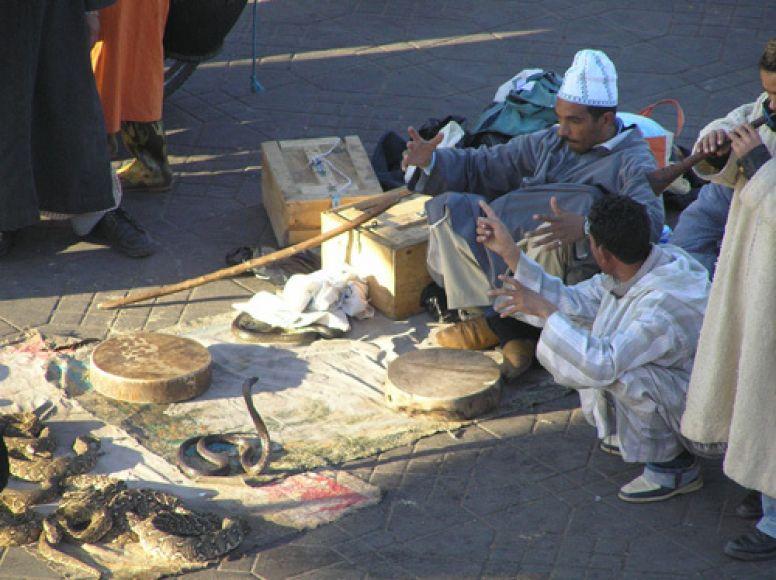 Charmeurs de serpents sur la place Jemaa